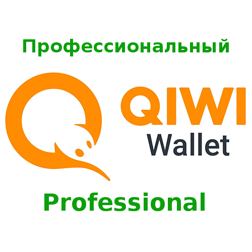 Full user identification of the payment system «QIWI-Wallet». Acquisition of the user status «Professional»